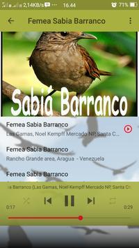 Canto de Sabia Barranco screenshot 7