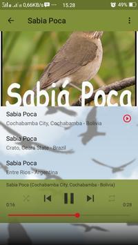 Canto de Sabia Poca screenshot 4