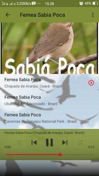 Canto de Sabia Poca screenshot 7