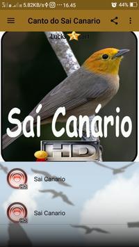 Canto do Sai Canario screenshot 1
