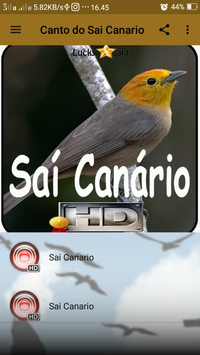 Canto do Sai Canario screenshot 1