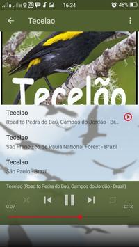 Canto de Tecelao apk screenshot
