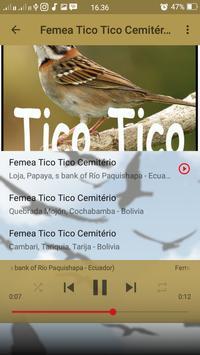 Canto de Tico Tico Cemitério screenshot 7