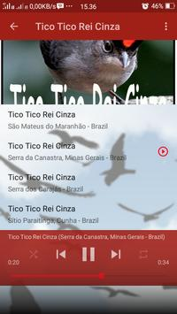 Canto de Tico Tico Rei Cinza screenshot 6
