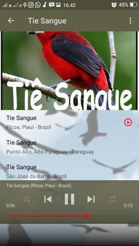 Canto de Tie Sangue apk screenshot