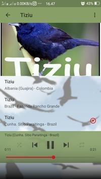 Canto do Tiziu screenshot 3