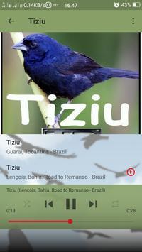 Canto do Tiziu screenshot 4