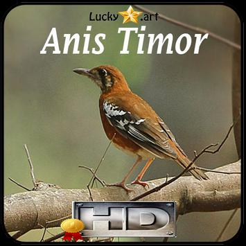 Anis Timor Top apk screenshot