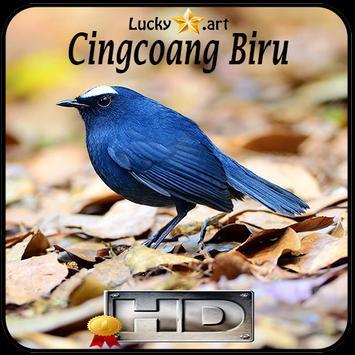 Cingcoang Biru Top apk screenshot
