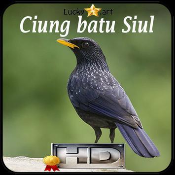 Ciung batu Siul Top poster