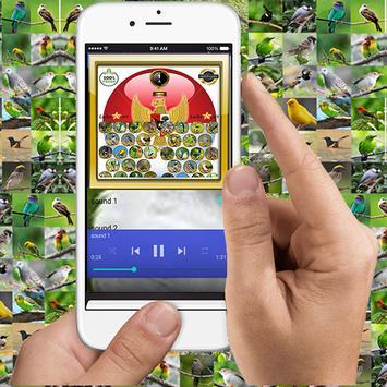 Masteran Siri Siri Mini apk screenshot