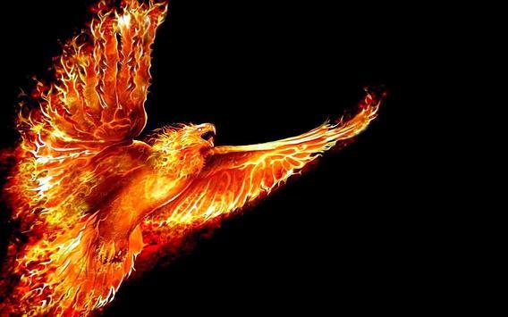 Phoenix HD Live Wallpaper apk screenshot