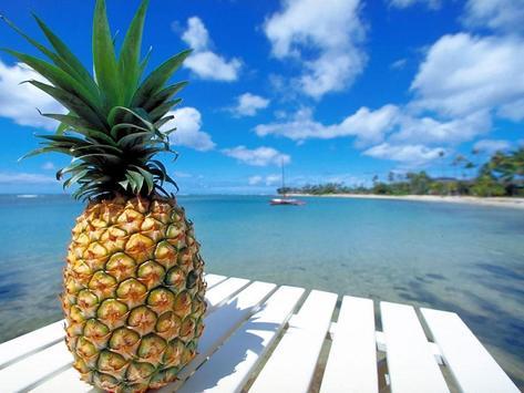 Pineapple Live Wallpaper screenshot 1
