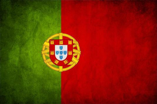 Portugal Flag Live Wallpaper apk screenshot