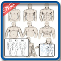 Learn to Draw : Human Bodies