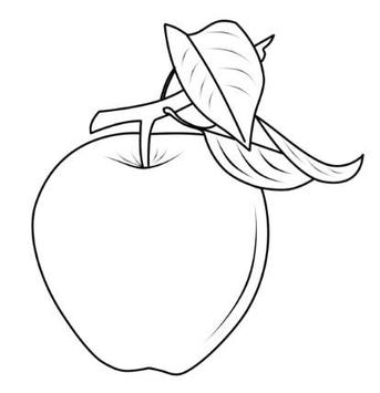 Learning Coloring Fruits screenshot 12