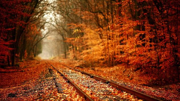 Rail Live Wallpaper Rush apk screenshot