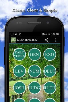 King James Audio Bible Free poster