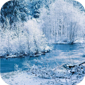 Winter forest. Live wallpaper icon
