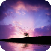 Field, sky and alone tree icon