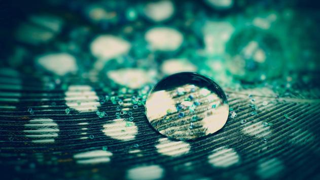 Macro. Water drops. Wallpaper screenshot 4