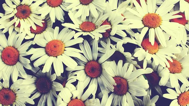 Vintage. Flower texture screenshot 3