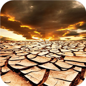 Dry land. Live wallpapers icon