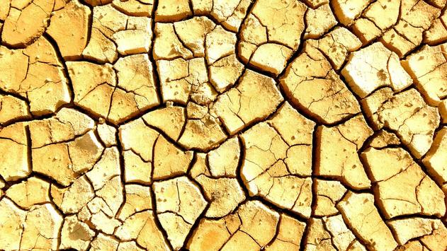 Dry land. Live wallpapers apk screenshot