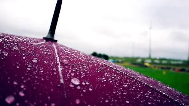 Umbrella. Live wallpapers apk screenshot