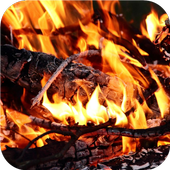 Burning wood. Live wallpapers icon