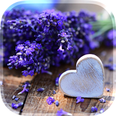Love Flowers Live Wallpaper icon