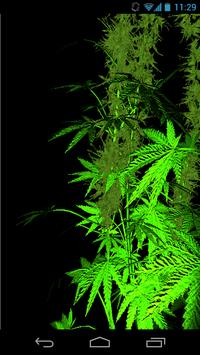 ... Weed 3D Live Wallpaper screenshot 2