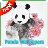 Panda Wallpapers icon