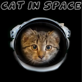 Cat in Space icon