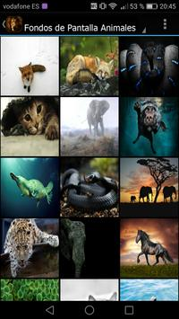 Fondos de Pantalla Animales screenshot 1