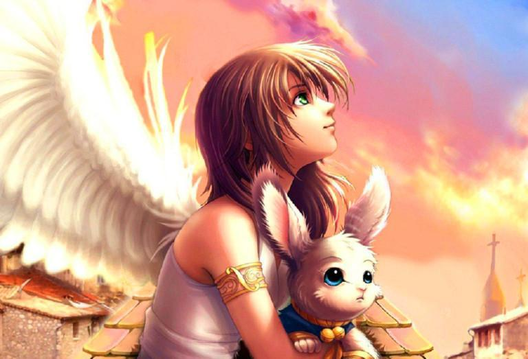 Anime Angels Live Wallpaper For Android Apk Download