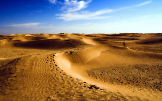 Desert Live Wallpaper apk screenshot
