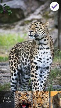 Leopard Cat Lock Screen apk screenshot