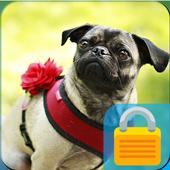 Little Pug PIN Lock icon