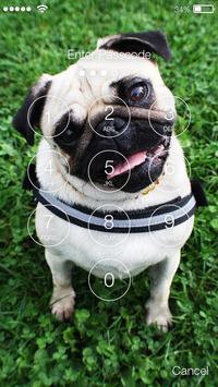 Little Pug PIN Lock screenshot 1