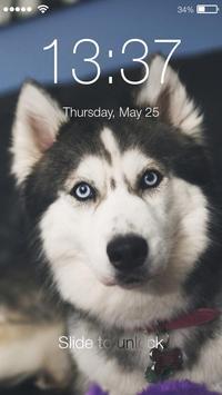 Wonderful Faithful Hasky Domestic Pets Smart Lock apk screenshot
