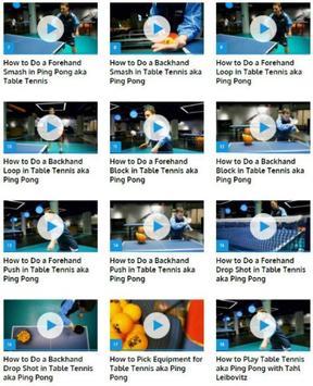 Table Tennis (Ping Pong) apk screenshot
