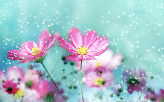 Pink flowers live wallpaper apk download free personalization app pink flowers live wallpaper apk screenshot mightylinksfo