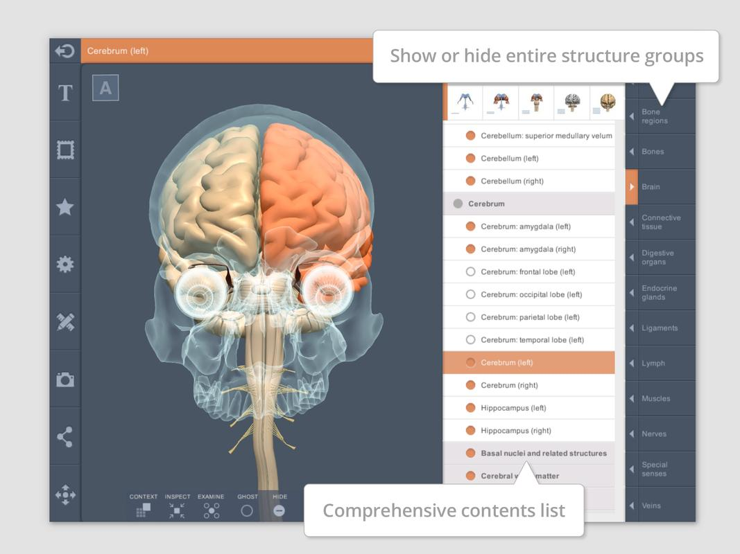 Head And Neck 3d Rt Sub For Android Apk Download