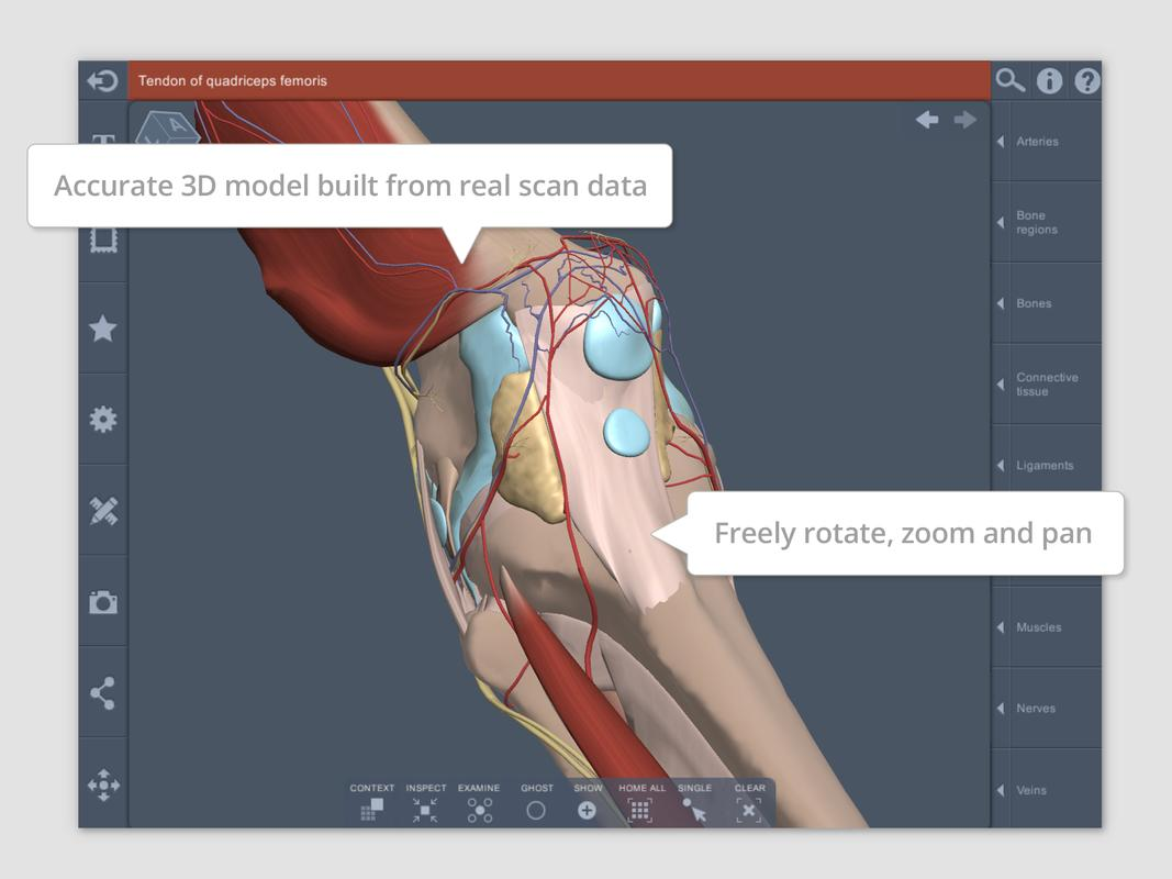 Knee 3d Rt Sub Apk Download Free Medical App For Android