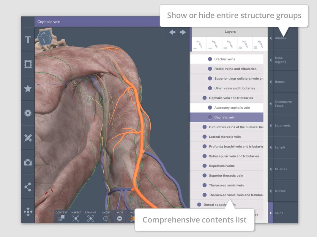 Shoulder and Arm: 3D RT - Sub APK Download - Free Medical APP for ...