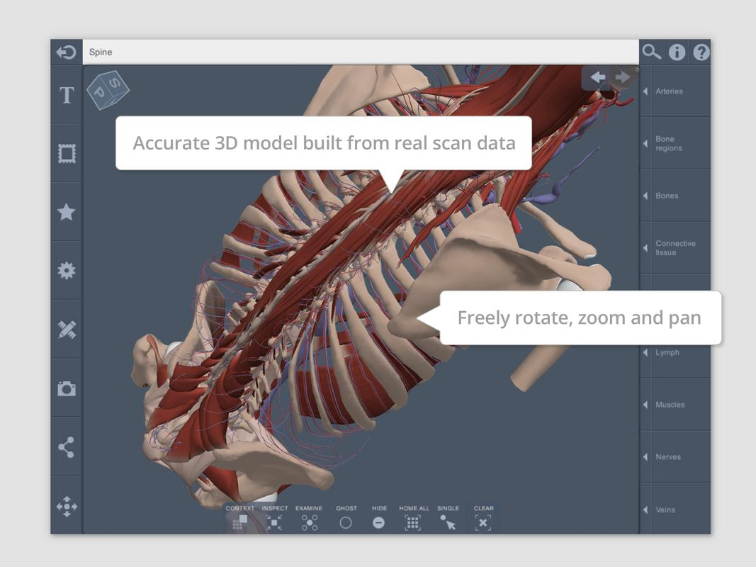 Spine: 3D RT - Sub APK Download - Free Medical APP for Android ...