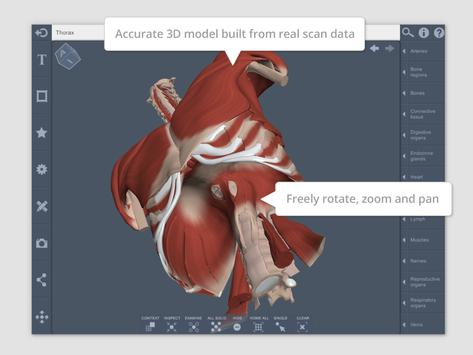 Thorax 3d Rt Sub Apk Download Free Medical App For Android