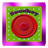 Socckey icon