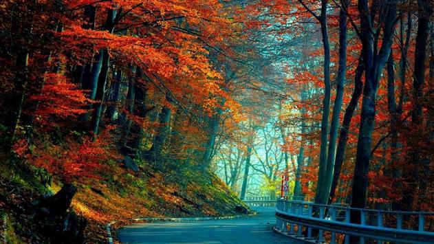 Autumn Wallpaper screenshot 9